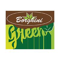 Borghini Green